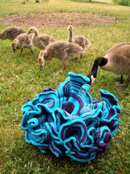 Daina Taimina's hyperbolic manifold and geese